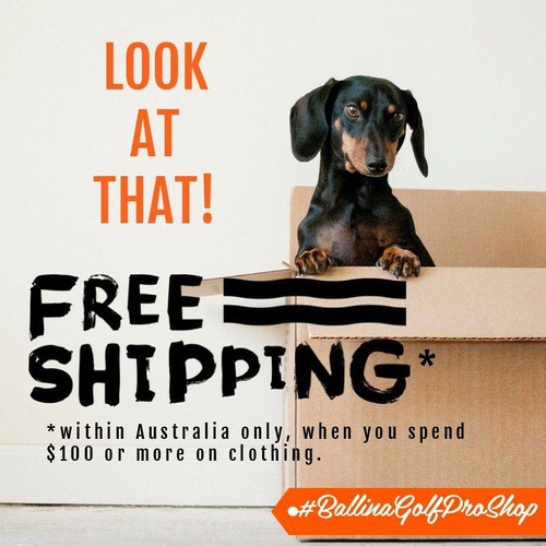 Free shipping when spend $100