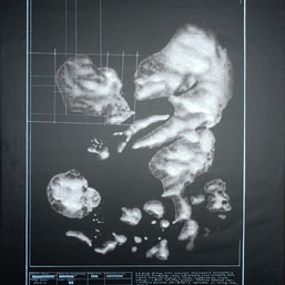obraz  na płótnie, technika własna płótno, 120 × 90 cm, 2018