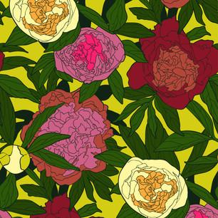 blooming-peonies-06jpg