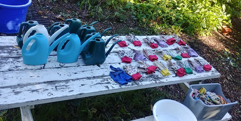 watering cans and gloves