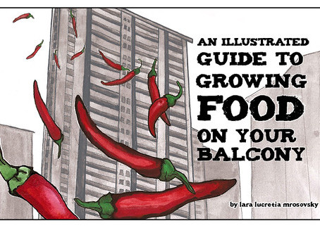 A quick endorsement! Growing food on your balcony guide!