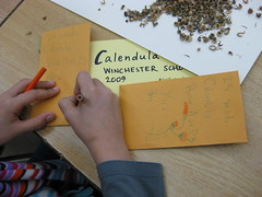 Designing seed packets.
