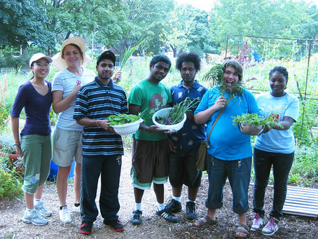TOMORROW: Showcasing a successful youth green jobs program  and local food access for the community