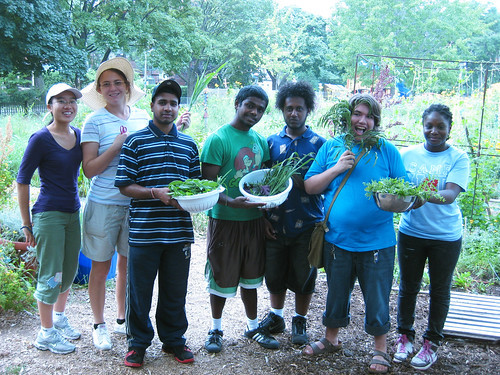 garden pickings and youth