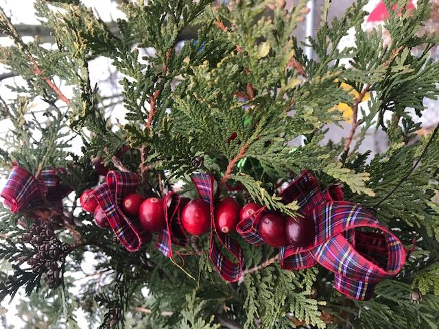 Winter Solstice Tree 2020.a