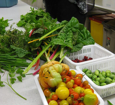 School gardens and healthier school menus go hand in hand!