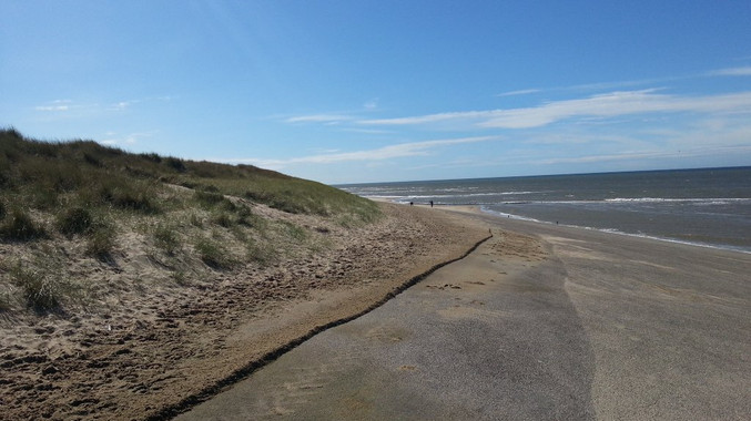The dunes and sea