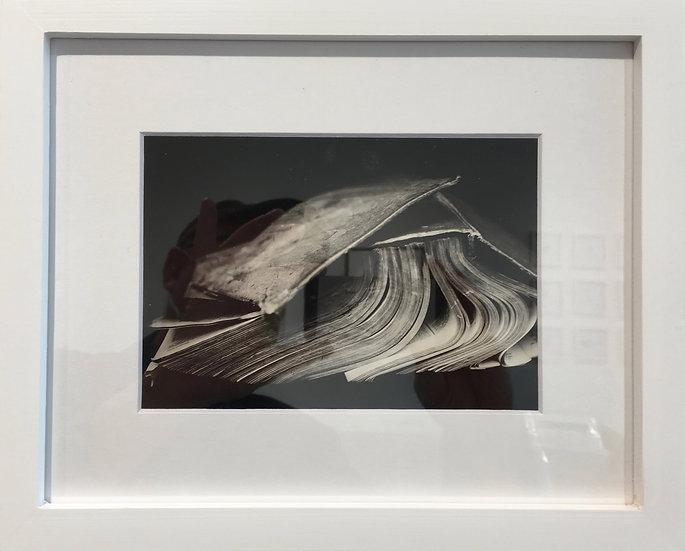 """Greg Martin 8""""x10"""" Framed Photos"""