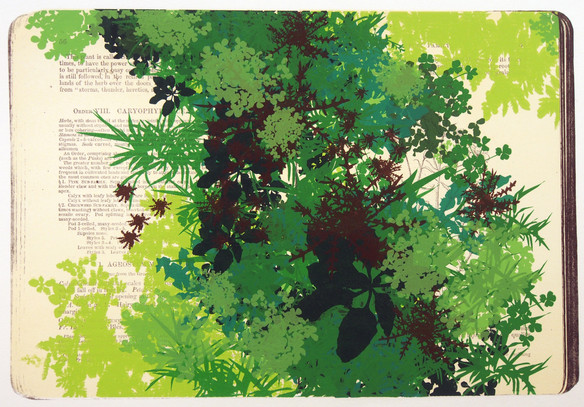 Kim Beck, Weed Book V
