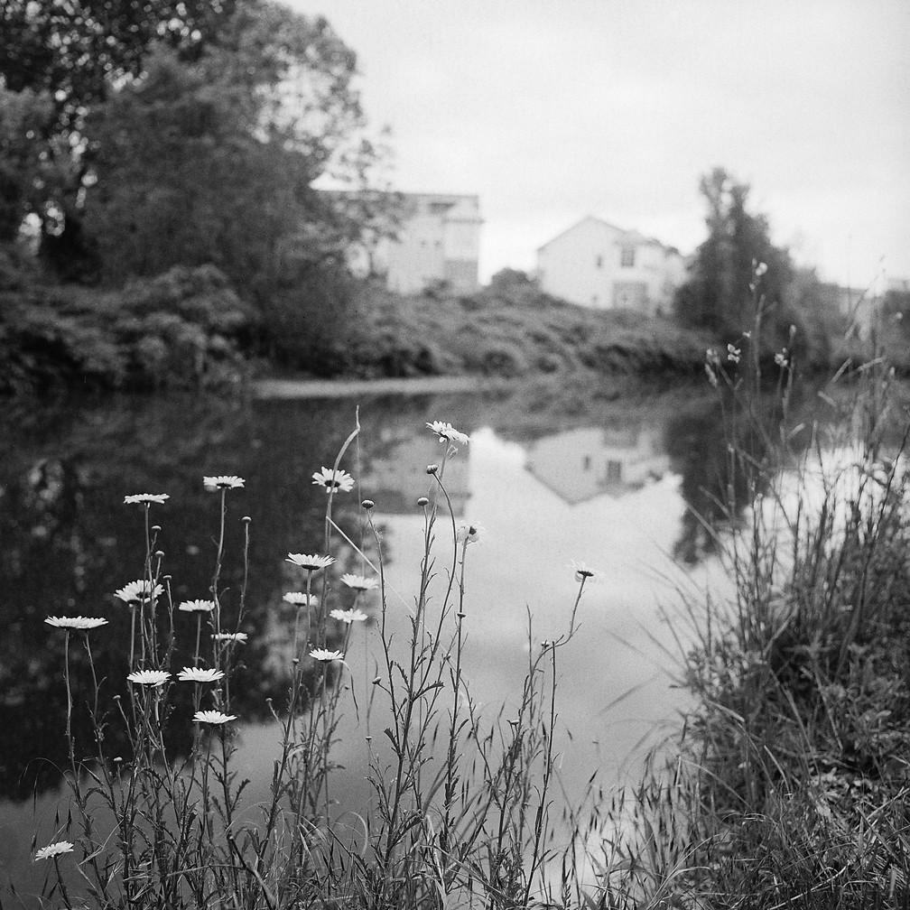 Michael Loderstedt, Euclid Creek & Fever Few