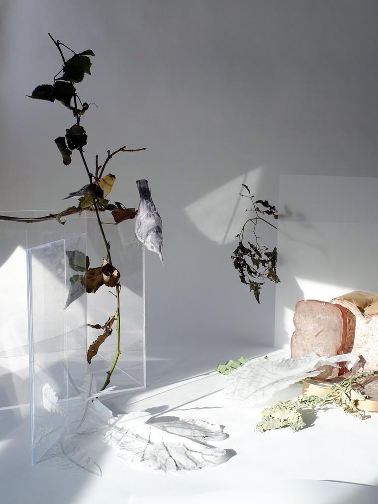 Lori Kella, Winter's Fragments