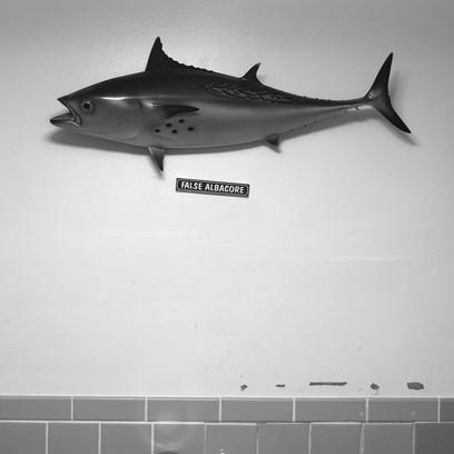 False, Life Saving Museum, Ocean City, MD