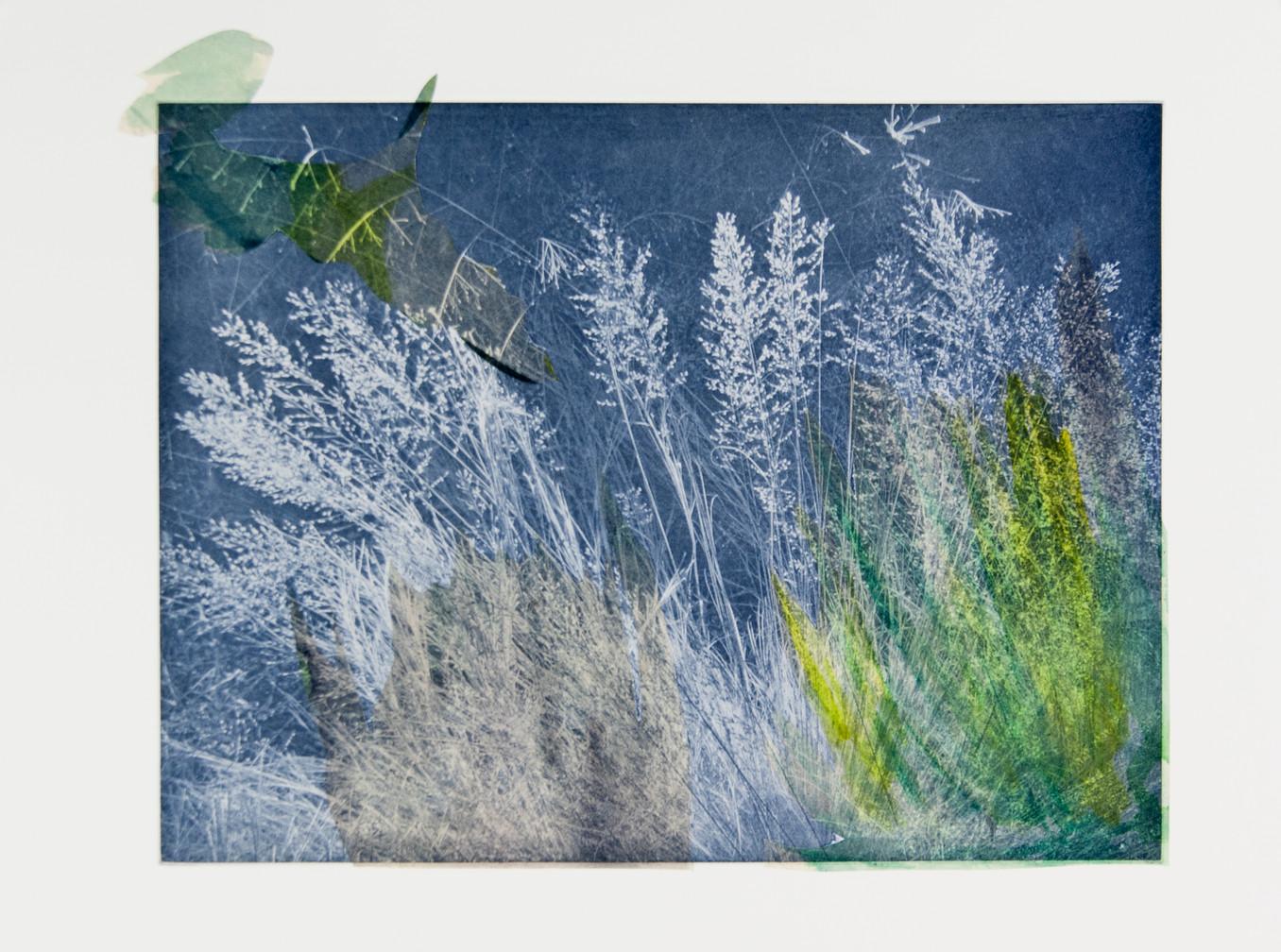 Taryn McMahon, Seeming Nature V
