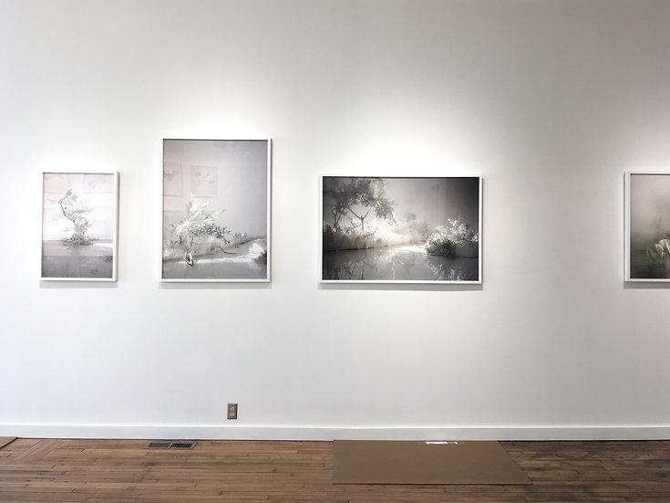 """Lori Kella Framed 40"""" x 30"""" print"""