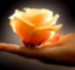lettura dell'aura, lettura aura, corsi, seminari, scuola lettura dell'aura