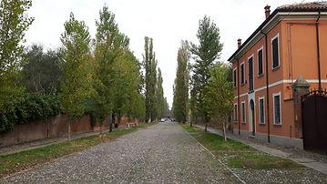 Lettura Aura, Lettura dell'Aura, Seminari, Corsi, Scuola di Lettura dell'Aura