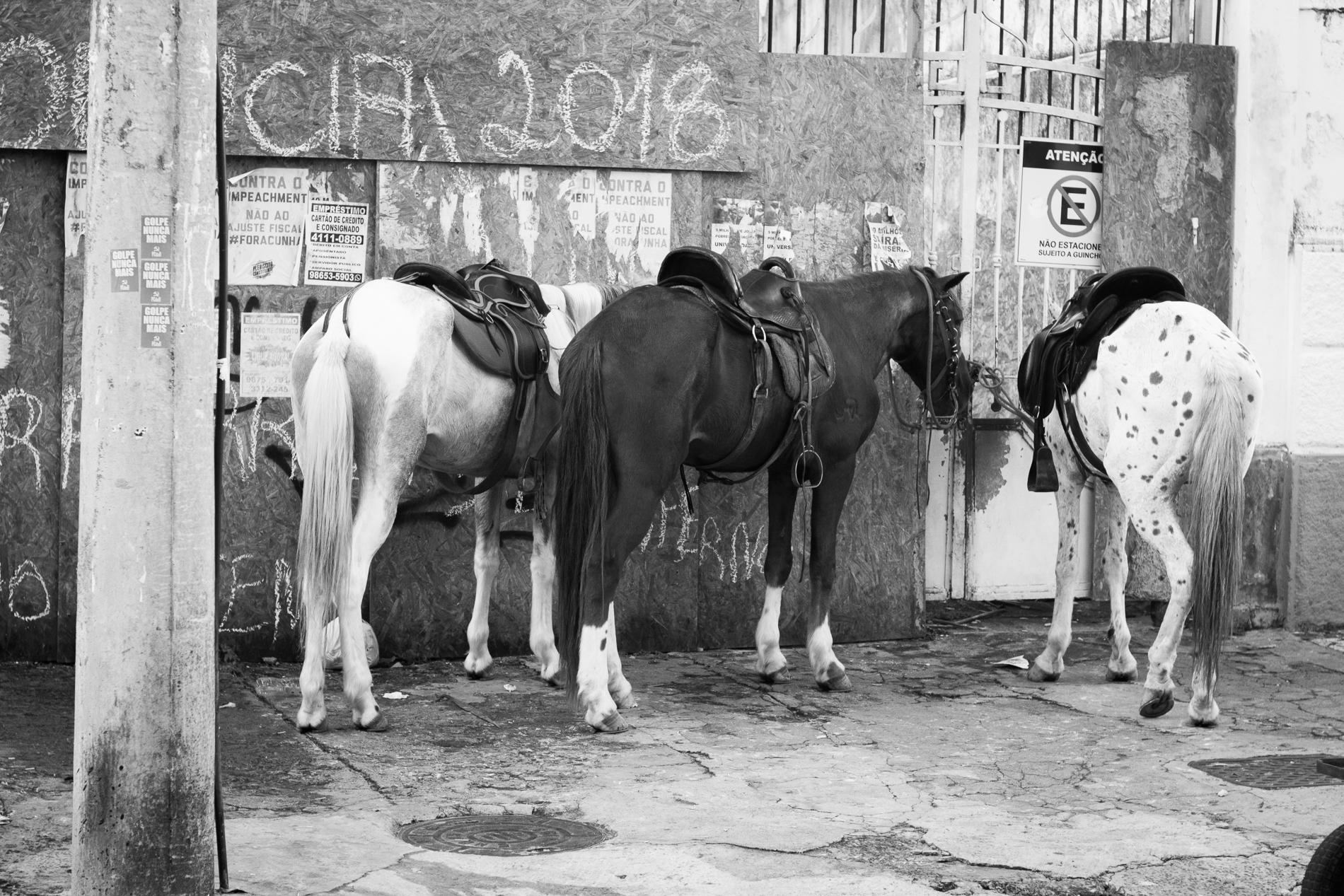 Campo Grande SSA