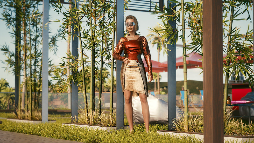 Phoenix Formal Dress With Microarmor Layer