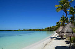 paradise-islands-tour-isla-contoy-and-is