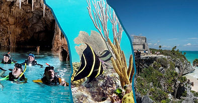 turtles-tulum-cenotes.jpeg