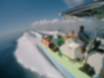 OCEAN TOUR WHALE SHARK (14).JPG