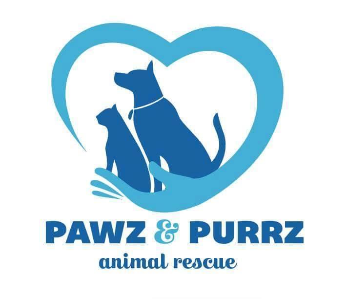 Pet Adoption | New York | United States | Pawz & Purrz