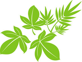 vector_tree_leaf_557965.jpg