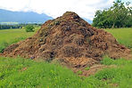 compost for soil pic for wix.jpg