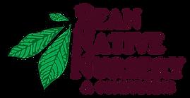 Bean Native Nursery Logo-01.png