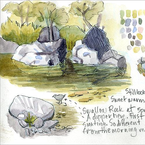 Lakes, Creeks & Rivers: Sat, April 17, 2021 | 10 am - 1 pm PT