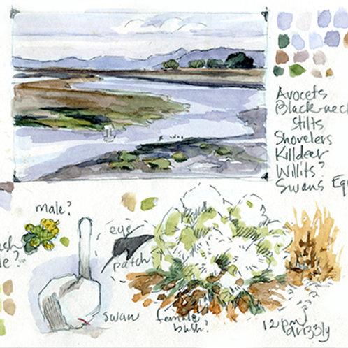Miniature Landscapes: Sat, July 31, 2021 | 10 am - 1 pm PT