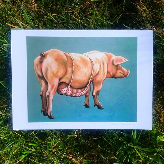 Pig in a Bra | Fine Art Print