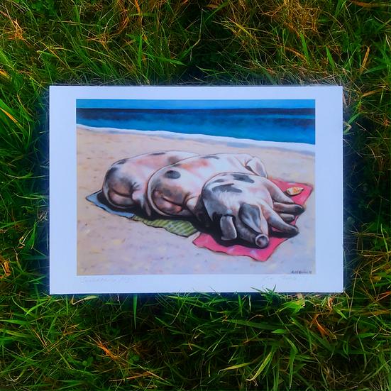 Sunbathing Pigs | Fine Art Print