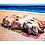 Thumbnail: Sunbathing Pigs | Fine Art Print