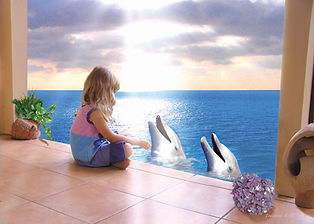 Talking To The Dolphins.jpg