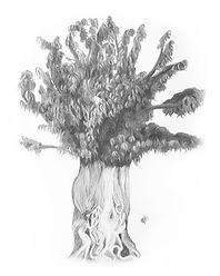 Dryad Tree.jpg
