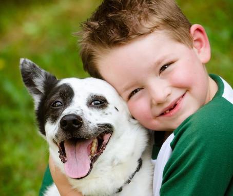 אמא! אני רוצה כלב!