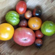 Mélange de tomates