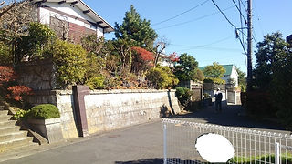 6-kamamura-b.jpg