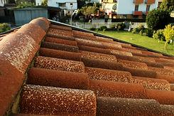 Manto di copertura tetto