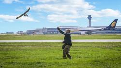 control de halcones en aeropuerto