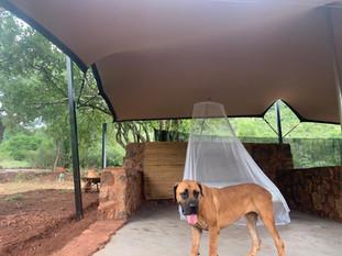 my grootfontein Serengeti Bush Camp (25)