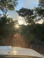 Flora at Grootfontein (10).jpeg