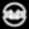 logo_color копия.png