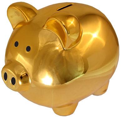 piggy-bank-1270926_1920.jpg