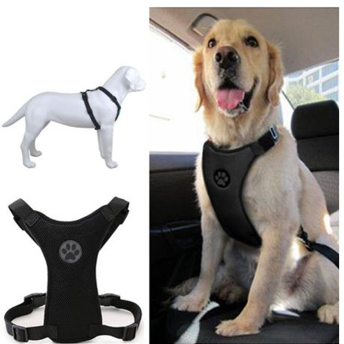 Breathable Mesh Safety Car Seat Buckle & Harness
