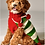 Thumbnail: Chilly Dog Christmas Elf Sweater