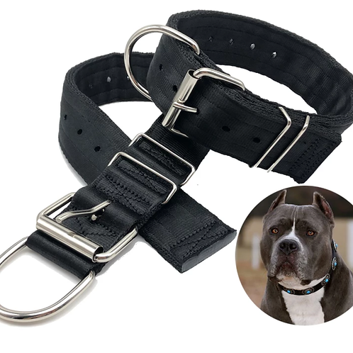 Four Layered 2 Inch Wide Heavy Duty Collar