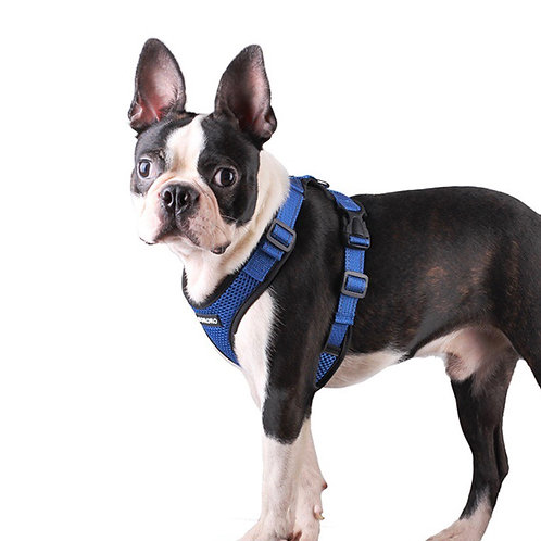 Reflective Breathable Mesh Harness