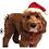 Thumbnail: Huxley and Kent Santa Claus Hat